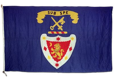 [Dundee, Perth & London Shipping Co., Ltd houseflag]