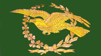 [unidentified Irish eagle flag]