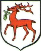 [Dobre Miasto Coat of Arms]