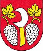 [Borová coat of arms]