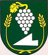 [Vinica coat of arms]
