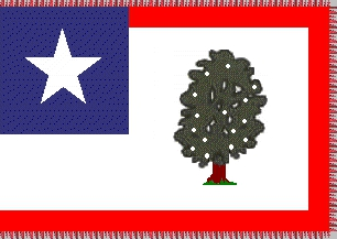 [Standard for the 1st Mississippi Cavalry]